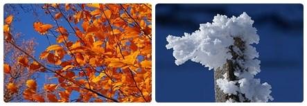 offerta autunno inverni