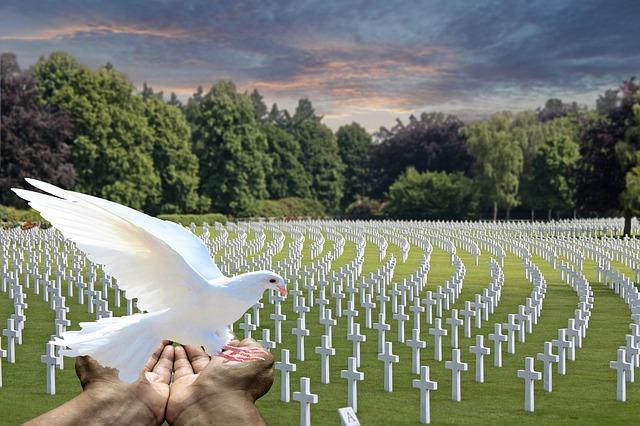 Caduti: Mostrine militari
