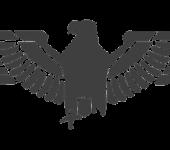 Simbologia del falco