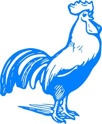 Gallo come cognome