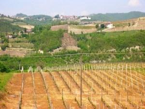 Loazzolo: Concorso letterario dialetto piemontese