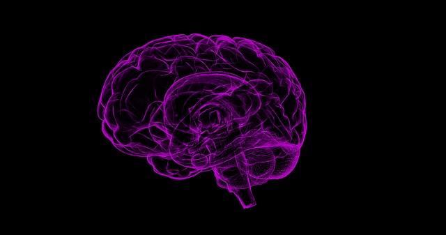 Cervello come cognome