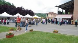 Festa alla cantina di Vinchio e Vaglio Serra