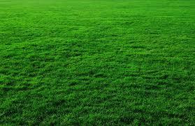 Verde come cognome (Gian)