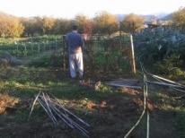 Bella giornata autunnale (ottobre 2016) soleggiata e mite, l'ideale per i lavori di pulizia dell'orto