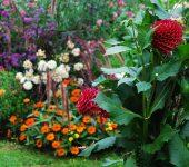 Mostra floricoltura